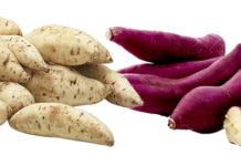 Batata-doce-roxa-e-branca