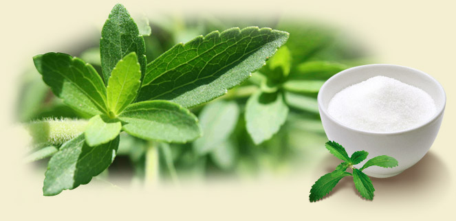 Adoçantes naturail stevia