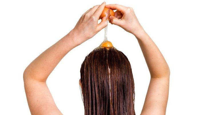 ovos para os cabelos