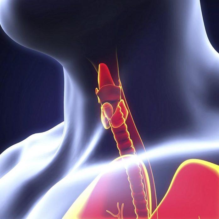 hipotireoidismo sintomas causas congenita