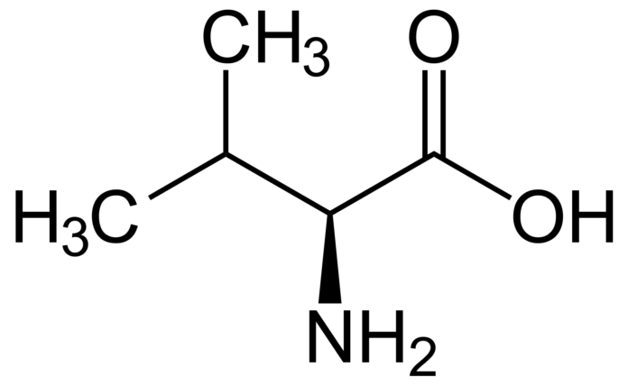 L-valina